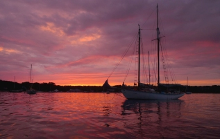 Heart's Desire in Vineyard Haven, first summer back, 2010.