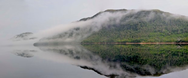Fog lifting, Southeast Arm of Grey River, Newfoundland.