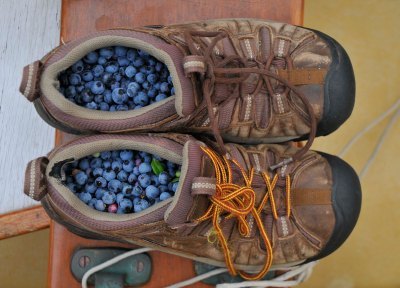 Jess' shoes filled with blueberries