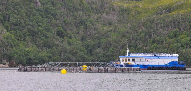 Fish pen with the support barge.