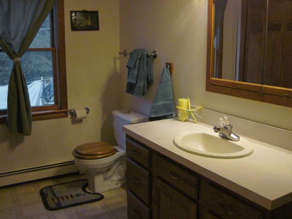 Downstairs bathroom with bathtub and shower